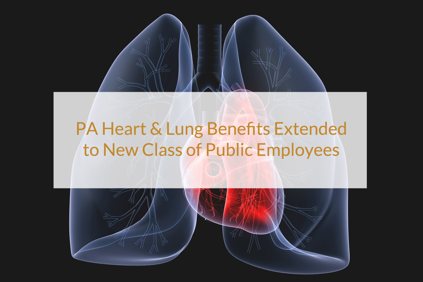 PA Heart & Lung Benefits
